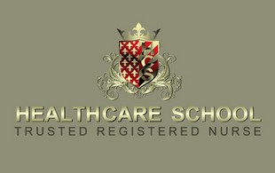 Health Care School Nursing Logo