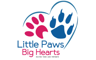 little paws big pet