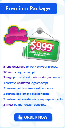 Logo Premium Package